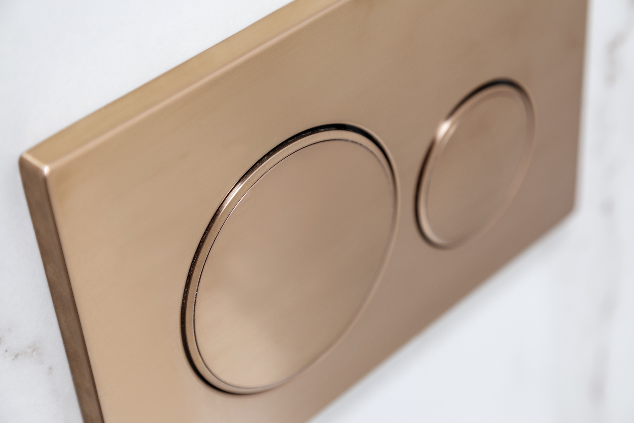 Mount Lawley Traditional Skylit Ensuite - Brass toilet flush buttons